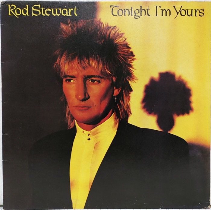 ROD STEWART / TONIGHT I'M YOURS